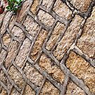 Alley Wall © by Ethna Gillespie