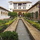Patio de la Acequia, Alhambra Generalife, Granada, Andalucia, Spain by TonyCrehan