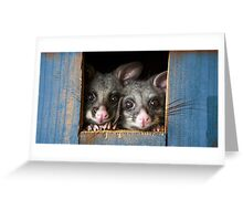 """""""Poppy & Ivy"""" Brushtail Possums Greeting Card"""
