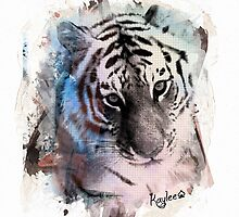 Painted Tiger  by klh0853