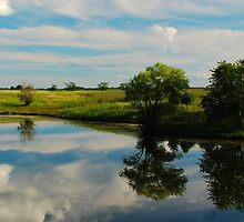 Summer Reflections on an Iowa Pond by iowasix