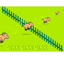 Jumping Pigs Photographic Print