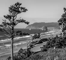 Cannon Beach View- Black and White by mspixvancouver