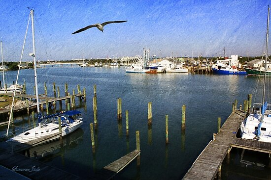 The Boatyard ~ A Gull's View by SummerJade