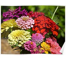 Picked flowers Poster