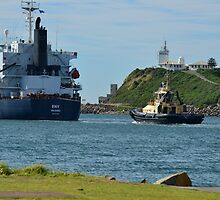ENY - BULK CARRIER by Phil Woodman