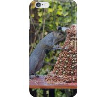 Extermin-Nut! iPhone Case/Skin