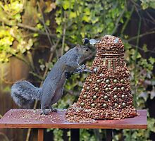Extermin-Nut! by ChrisBalcombe