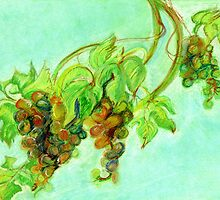 Green grapes by Redilion