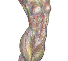 Braided Legs (tri-coloured pencil) by mugs-munny