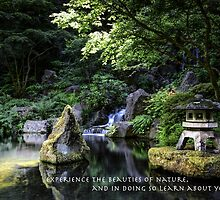 Japanese Nature by Heather Allen