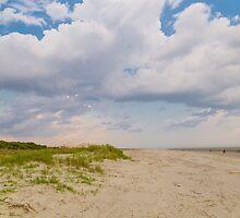 Sullivans Island Beach Day by Patrick Brickman