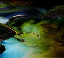 Twiggy........... by Imi Koetz