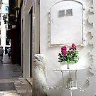 Pedestrian Palma. by Paul Pasco