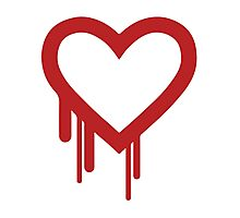 Heartbleed Photographic Print