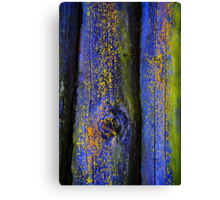 Old Wood Texture 03 Canvas Print
