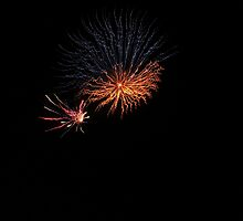 Firework Duo by kashmirecho