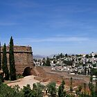 Granada view from the Alhambra by Linda More