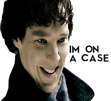 Sherlock Holmes Is On A Case by Diana G