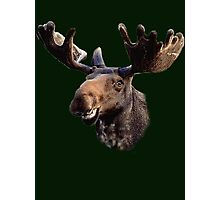 Smilin' Moose Photographic Print