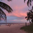 Pink Florida Sunset by Sandra Gray