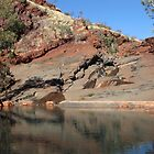 Hamersley Gorge - pool   (Pilbara, WA) by gaylene
