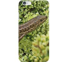 Skink on Asparagus blossoms iPhone Case/Skin