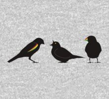 3 little birds Kids Clothes