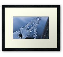 Ice Crystals on Web Framed Print