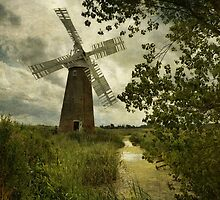 Hardley Mill by Sarah Jarrett