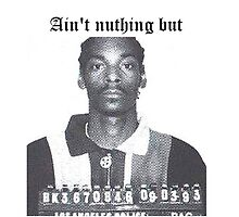 """Ain't nuthing but a G thang"" Snoop Dog by vodkavuttion"