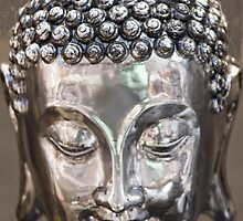 Reflective Forehead by phil decocco