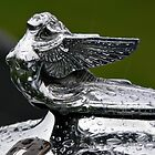 Hood Ornament - 1932 Plymouth by PhotosByHealy