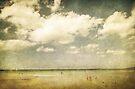 Summertide by Andrew Paranavitana