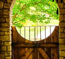 RUSTIC CIRCLE AND GATE by pjm286