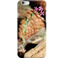 Wildflower Surrounded by Pine Cones iPhone Case/Skin