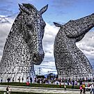 Kelpies by Tom Gomez