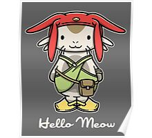 Hello Meow Poster
