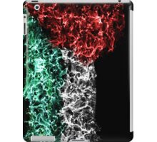 Galaxy of Palestine iPad Case/Skin