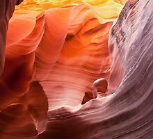 Beauty in an alien world... Rattlesnake Canyon by Owed to Nature