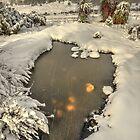 Winter landscape, Cradle Valley by Kevin McGennan