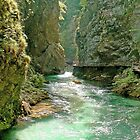 Vintgar Gorge by Graeme  Hyde