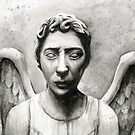 Weeping Angel - Don't Blink! by OlechkaDesign