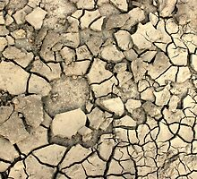 Drought Stricken Earth - Phone Cases, Pillows and More by BadJokeJoel