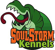 SoulStorm Kennels Photographic Print