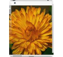 Calendula marigold iPad Case/Skin