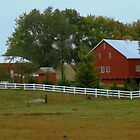 Country Life (SMALLTOWN USA series)  ^ by ctheworld