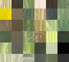 Cactus Garden Abstract Rectangles 3 by Christopher Johnson