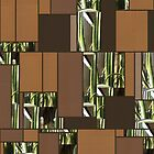 Cactus Garden Art Rectangles 6 by Christopher Johnson