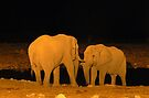 Night-time Rendezvous by Graeme  Hyde